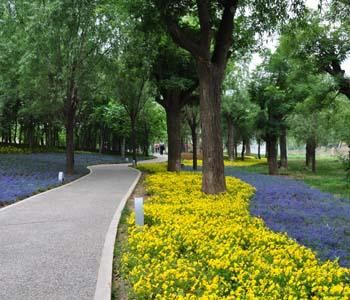 2011西安世界园艺博览会景观工程